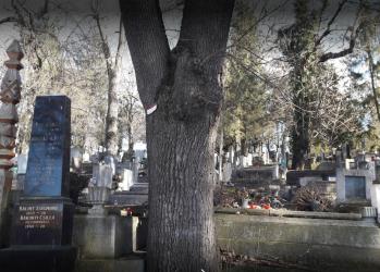 cimitirul reformat