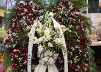 floraria adi arad